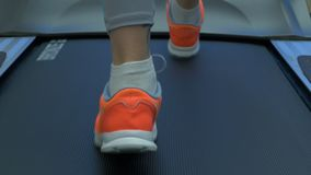 Woman`s muscular legs on treadmill. woman`s muscular legs on treadmill, closeup. girl`s legs on treadmill or running stock images