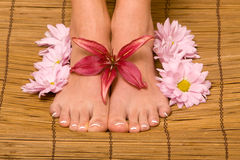 Woman's pedicured feet Stock Images