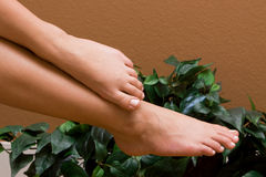 Woman's pedicured feet Royalty Free Stock Photography
