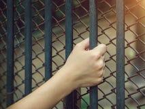 Woman& x27; s ręka trzyma Stalowego areszt Fotografia Stock