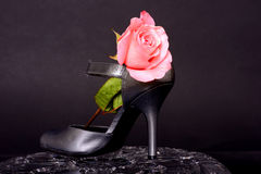 Woman's Shoe and rose Stock Image