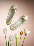 Woman's shoes Stock Photography