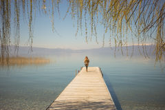 Woman`s silhouette standing on a lake pier. Woman`s silhouette standing on a wooden lake pier behind willow branches and leaves on a warm and sunny spring day stock photography