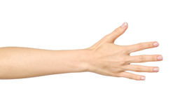 Woman`s stretched hand with open palm. Isolated on white royalty free stock photography