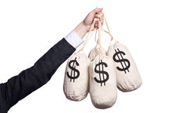Woman with sacks of money Stock Images