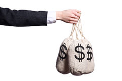 Woman with sacks of money Royalty Free Stock Image