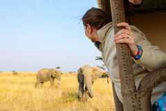 Woman on safari game drive Royalty Free Stock Images
