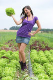 Woman with a salad. Royalty Free Stock Images