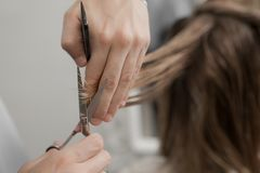Woman in a salon getting a hair cut Royalty Free Stock Images