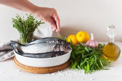 Woman salt raw fish before cooking. Fresh fish and ingredients on the white wooden table Royalty Free Stock Photography