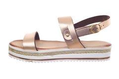Woman sandal Royalty Free Stock Image