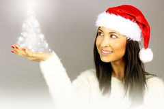 Woman with a santa hat holding a tree. Beautiful woman with a santa hat holding a tree in his hand stock photos