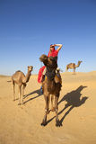 Woman in sari riding a camel. Stock Photos