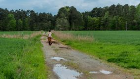 Woman in sarong walking on dirt road with puddles in field royalty free stock photography