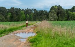 Woman in sarong walking on dirt road with puddles in field royalty free stock photo