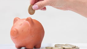 Woman saving money into a traditional clay piggy b. Close up of a woman saving money into a traditional clay piggy bank stock video footage
