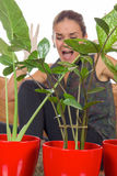 Woman scared of insects in plants Royalty Free Stock Photography