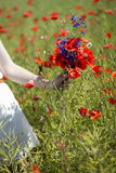 Woman with scarlet bouquet on field background Stock Photo