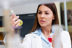 Woman scientist carrying out experiment in research laboratory. Woman scientist studying chemical liquid in lab flask. Scientist carrying out experiment in Stock Images
