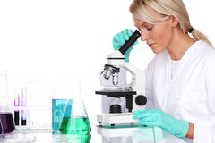 Woman scientist in chemical lab Stock Photography