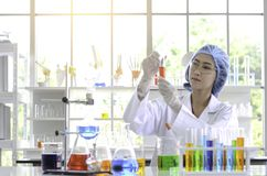 The woman scientist doing experiment. stock photography
