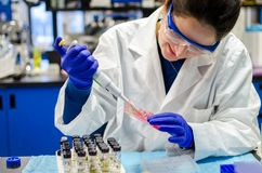 Woman scientist performing biomedical research in laboratory Stock Image