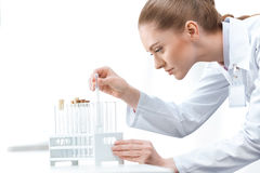 Woman scientist working with test tubes on white Royalty Free Stock Image