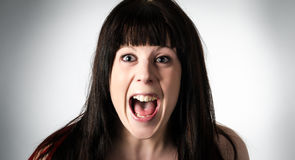 Woman screaming in horror or terror. Young attractive brunette woman screaming in horror or terror with her mouth wide open Stock Photography
