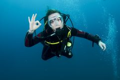 Woman scuba diver Stock Image