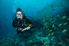 Woman scuba diver exploring sea bottom. Underwater life with beautiful corals and lots of colored fish. Indian ocean, Maldives Stock Image
