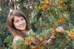 Woman in seabuckthorn plant Stock Photography