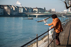 Woman with seagull in front of Rhine in  Basel in switzerland Stock Image