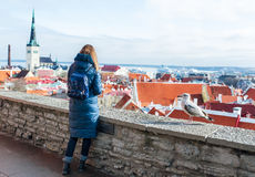 Woman and seagull at the observation point of Toompea hill. Historical part of Tallinn as a background.  royalty free stock images