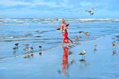 Woman and seagulls birds on beach by the sea. Ocean Shores in Olympic Peninsula. Seattle. Washington. United States of America stock photo