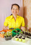 Woman with  seedling Stock Image