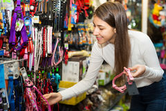 Woman selecting collars and leads Stock Photography