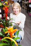 Woman selecting flowers in store. Portrait of smiling mature woman selecting flowers in store Royalty Free Stock Photos