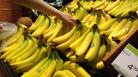Woman selecting fresh banana in grocery store stock video
