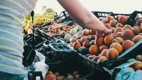 Woman Selecting Fruit on Showcase At Street Market stock video