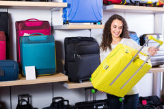 Woman selecting handy trunk in store Royalty Free Stock Images
