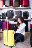 Woman selecting handy trunk in store Royalty Free Stock Photo
