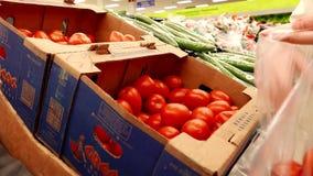 Woman selecting roma tomato stock footage