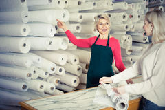 Woman seller displaying diverse fabrics Stock Image