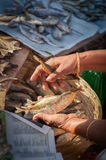 Woman selling dried fish at Mapusa market. Goan woman selling dried fish at Mapusa market, hand detail Stock Photos