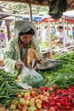 Woman selling greengrocery at asian market. Bagan, Myanmar Royalty Free Stock Photos
