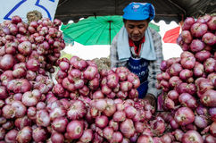 Woman selling onions royalty free stock photography