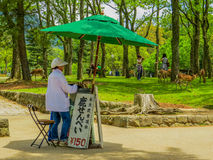 Woman selling snacks in Nara Park. A woman selling snacks with deers in the background in Nara Park, Japan Royalty Free Stock Photos