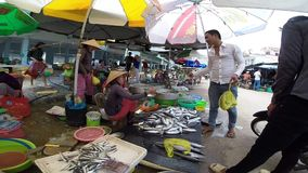 Woman sells fresh fish at the Vietnamese wet market stock footage