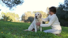 Woman with senior labrador dog in the nature stock footage