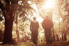 Woman and senior man jogging trough park together. From b royalty free stock photo